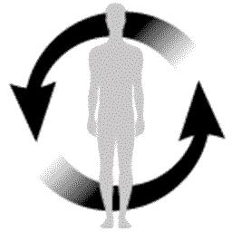 Verbessert die Blutzirkulation und gleicht Bewegungsmangel aus